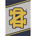 Milliken College Team Spirit (NCAA-SPT) Notre Dame 45881 Spirit Rectangle (4000054406) 5