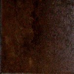 "MS International Antares: Jupiter Iron 16"" x 24"" Porcelain Tile NANTCOPER1624"