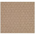 Capel Rugs Creative Concepts Grassy Mountain - Rectangle 4