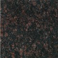 "Daltile Granite: Tan Brown Polished 12"" x 12"" Natural Stone Tile G289-12121L"