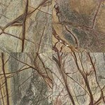 "Daltile Marble: Rainforest Green Polished 12"" x 12"" Natural Stone Tile M543-12121L"