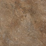 Shaw Array Resort Tile: Coco Luxury Vinyl Tile 0189V 750