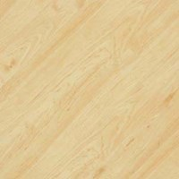 EarthWerks Wood Antique Plank: Luxury Vinyl Plank NWT 9418CD BE