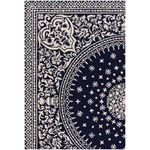 "Chandra Thomaspaul (T-SOIC-35) 3'0""x5'0"" Rectangle Area Rug"